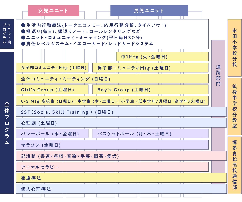 治療プラグラムの図